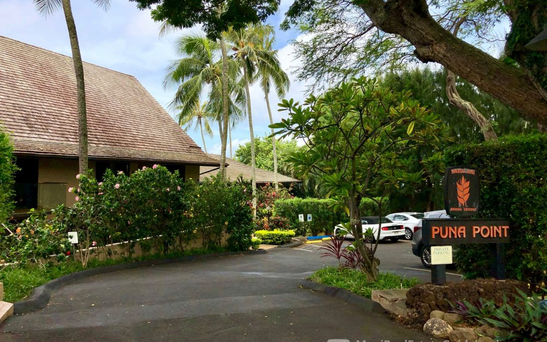 Puna Point Condos For Sale